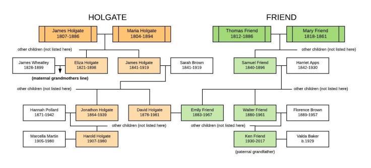 Holgate & Friend Tree